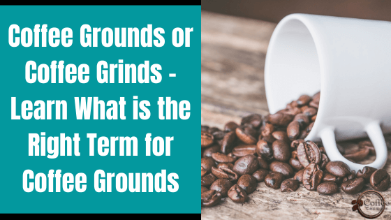 coffee grounds or coffee grinds